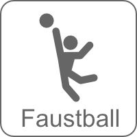 icon faustball